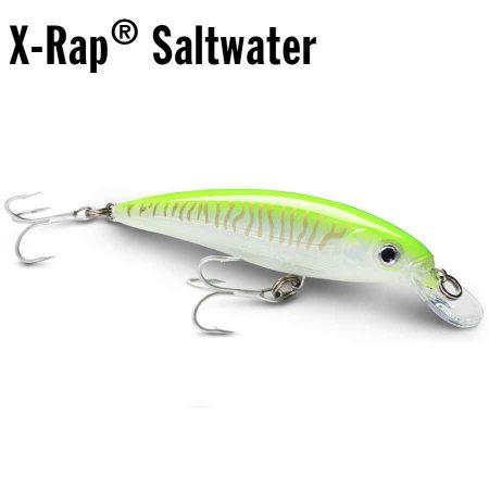 Rapala X-Rap Saltwater vobleris pagrindinis