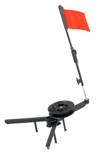 Žieminė vėliavėlėakara
